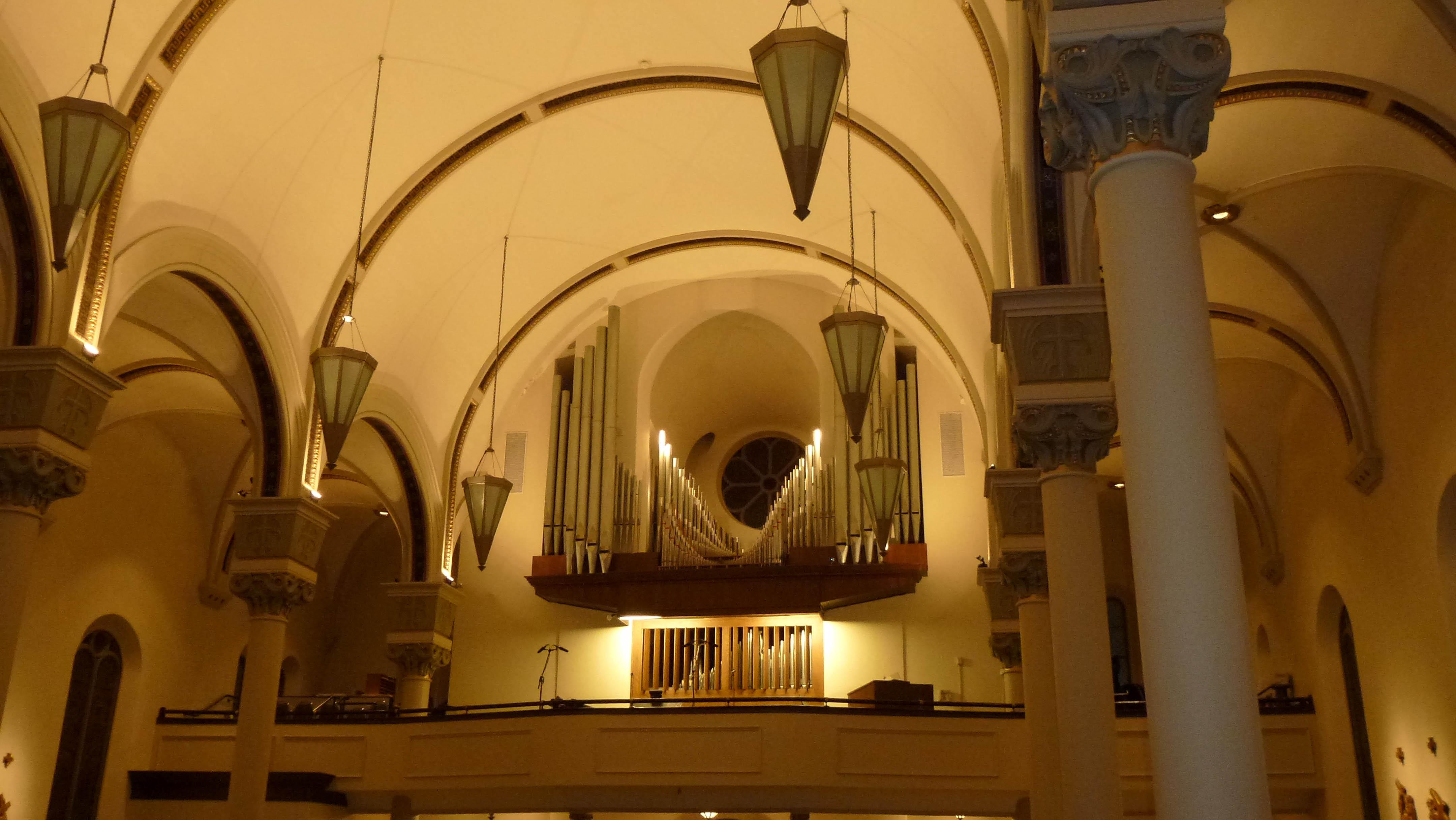 Organ gallery view